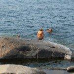 Skönt att svalka sig i det klara vattnet på Bengtskär...